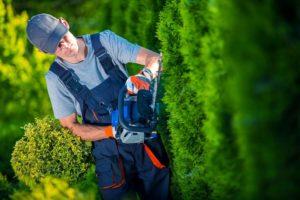 manutenzione_giardini